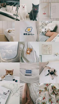 White Wallpaper, Tumblr Wallpaper, Screen Wallpaper, Wallpaper Backgrounds, Aesthetic Collage, White Aesthetic, Aesthetic Photo, Aesthetic Pastel Wallpaper, Aesthetic Backgrounds