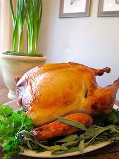 turkey day turkey