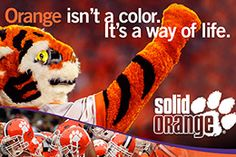 Clemson isn't just a color it's away of life!!! Go tigers we can win next year!:))