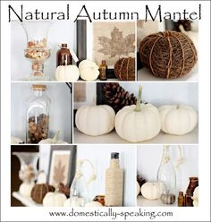 Beautiful Natural Autumn Mantel @ Domestically Speaking