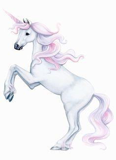 Unicorn Wall Sticker £24.99