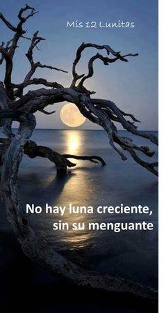 No hay luna creciente, sin su menguante  #EscueladeAstrologiaProyectoAzul #Mis12Lunita #YolyMora #Luna