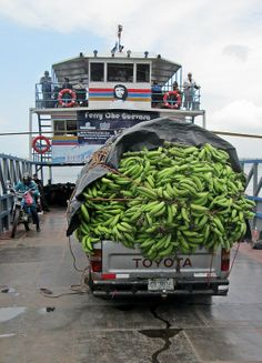 bananas on the way to market - Ferry 'El Che' Loads Up at Moyagalpa, Ometepe, Nicaragua