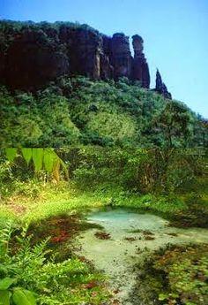 """Pregopontocom @ Tudo: Projeto de lei que altera proteção a floresta no P...   O ICMBio se posiciona pela manutenção da reserva biológica, entretanto o presidente do instituto acha possível uma negociação. """"Ao reconhecermos que houve um processo de cima pra baixo, porque a criação de reserva biológica não exige consulta, e que afetou as pessoas da região, a situação deve ser tratada com critério e base técnica, para não se perder uma das áreas mais importantes de conservação"""", disse Vizentin"""