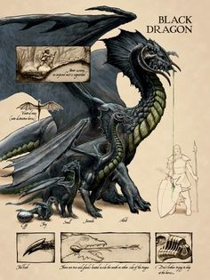 There be black dragons