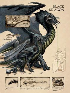 Recopilacion del dragon Oscuro.