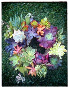 Living Succulent Wreath by SucculentArts on Etsy, $55.00