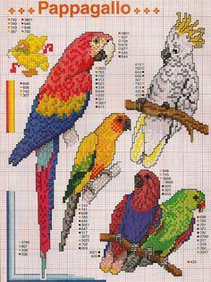 passaros.jpg (1196×1600)