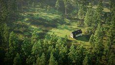 wild-cabins-wide-open-moxon-architects-designboom-10