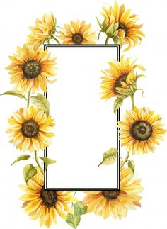 Sunflower Art, Watercolor Sunflower, Sunflower Design, Sunflower Images, Sunflowers Background, Sunflowers And Daisies, Iphone Wallpaper Vsco, Wallpaper Backgrounds, Pinturas Em Tom Pastel