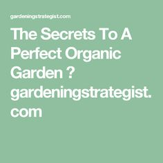 The Secrets To A Perfect Organic Garden ⋆ gardeningstrategist.com