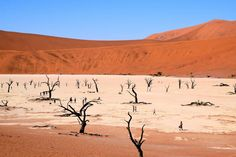 Namib-Naukluft National Park, Namibia, Africa. 52 Places to Go in 2014 - NYTimes.com