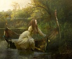 """*...    Out flew the web and floated wide-      The mirror crack'd from side to side;      """"The curse is come upon me,"""" cried            The Lady of Shalott....*  [Tennyson]"""