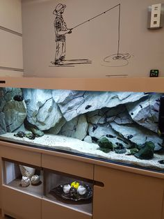 How To Choose A Tropical Fish Aquarium The first decision you must make when you buy an aquarium is whether you plan to keep freshwater fish or saltwater Aquarium Cichlidés, Fish Aquarium Decorations, Cichlid Aquarium, Tropical Fish Aquarium, Aquarium Design, Saltwater Aquarium, Freshwater Aquarium, Aquariums Super, Amazing Aquariums