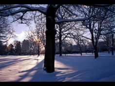 Antonio Vivaldi.Four seasons.Winter. (+playlist)