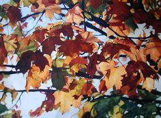 fall_leaves.jpg (1391×1018)