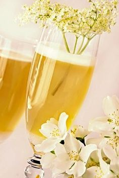 Bezinkové šampaňské White Wine, Alcoholic Drinks, Juice, Food And Drink, Smoothie, Recipes, Gardening, Tips, Party