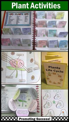 Plant Activities: Here are several plant activities for kids, including a plants life cycle accordion book, parts of a flower foldable, plants word find, plants nonfiction reading comprehension passages, plant vocabulary interactive notebook, plants task cards and more.  These work well for whole group instruction, small groups, science centers and special education students.  www.teacherspayte...