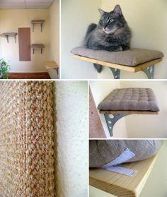 Clique Arquitetura - Seu portal de Ideias e Soluções - Pet Gato: dicas importantes Animal Room, Animal Decor, Cat Wall Shelves, Diy Cat Tree, Cat Towers, Cat Playground, Cat Enclosure, Cat Room, Cat Decor
