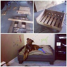 Tu deinem Hund etwas gutes mit diesen 11 wunderbaren Betten aus Paletten - DIY Bastelideen