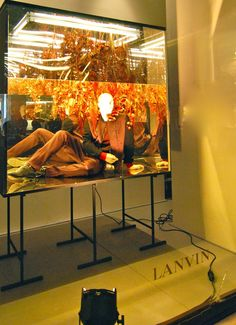 """LANVIN,Paris,France, """"Large specimens may require the use of open glass cabinets"""", photo by MesVitrines, pinned by Ton van der Veer"""