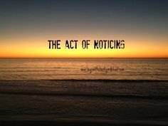 The Act of Noticing #writing