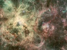 This is an image of the Tarantula Nebula in the Large Magellanic Cloud (LMC) and its surroundings. The LMC is a satellite galaxy to our Milky Way system, located in the southern constellation of Dorado (the Swordfish) at a distance of approximately 170 000 light-years.  Within this image is the runaway heavyweight star, called 30 Dor #016. It is 90 times more massive than the Sun and is travelling at more than 400 000 kilometres an hour from its home.