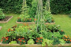 French Intensive Gardening With Beds And Tower Planters - Outdoor ...