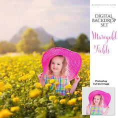 Digital Props 11x14 Backdrop Set - Marigold Fields