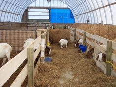 The inside of the new goat barn