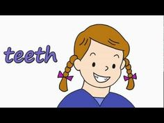 ▶ Talking Flashcards - FACE (eyebrows, neck, shoulders, nose, teeth, mouth, etc.)