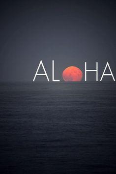 Hawaii one day