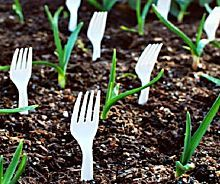10 Insanely Clever Gardening Tips And Ideas