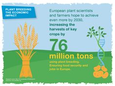 European plant scientists aim to increase harvest of key crops by 76 million tons.