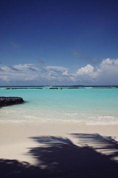Malediven mit Kindern – die perfekte Auszeit auf Kurumba | Butterflyfish | Bloglovin'