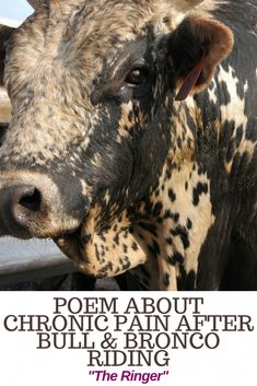 A poem about my husband and his continuing daily struggles with chronic pain after bull riding and bronco riding. Chronic Illness, Chronic Pain, Fibromyalgia, Poem About Myself, Bull Riding, Crps, Poems, Animals, Animaux