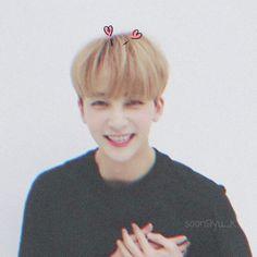Woozi, Wonwoo, Jeonghan Seventeen, Seungkwan, Mamamoo, Boyfriend Material, Ikon, Memes, Meme