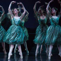 Artists of The Australian Ballet in Frederick Ashton's The Dream. Photography Daniel Boud