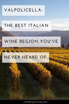 Valpolicella,the best Italiano wine region! Wine Wednesday, Italy Travel Tips, Rome Travel, Pinot Noir, Best Italian Wines, Cheese And Wine Tasting, Wine Cheese, Wine Guide, In Vino Veritas