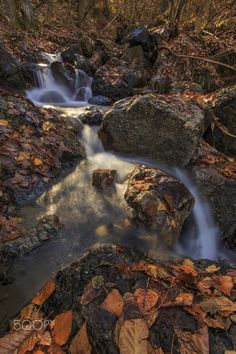 Autumn in Val Trebbia - null