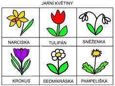 Spring Activities, Activities For Kids, Peta, Spring Flowers, Kindergarten, Preschool, Learning, Creative, Fictional Characters