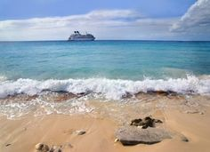 Only I Could Get On The Wrong Cruise Ship - News - Bubblews