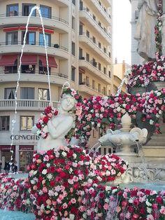 Place des Jacobins.  Fête de la rose