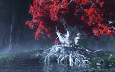 Game of Thrones relaxing music - Weirwood Theme - Extended One hour Game Of Thrones Tree, Game Of Thrones Artwork, Game Of Thrones Tattoo, A Clash Of Kings, Fire Fans, Writing Fantasy, Heart Tree, Fantasy Places, Mother Of Dragons