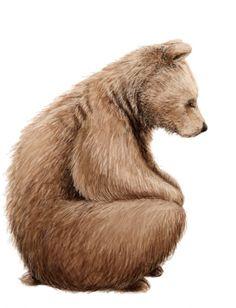 a hibernation of bears…
