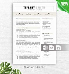 Instant Resume Templates Creative Resume Template Instant Download Modern Resume Cv