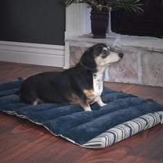 PETMAKER Roll Up Travel Portable Dog Bed *** More info could be found at the image url. (This is an affiliate link and I receive a commission for the sales)