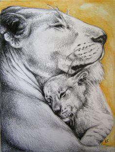 pencil & watercolour drawing