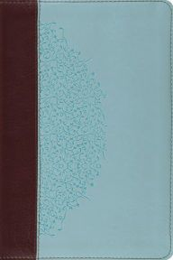 Title: Study Bible-ESV-Ivy Design, Author: Crossway Esv Bible, Compare And Contrast, Study Notes, Ivy, Chocolate, Illustration, Blue, Color