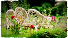 Garden Seat Acrylic Print by Gavin List. All acrylic prints are professionally printed, packaged, and shipped within 3 - 4 business days and delivered ready-to-hang on your wall. Thing 1, Acrylic Sheets, Garden Seating, Any Images, Clear Acrylic, High Gloss, Fine Art America, Prints, Artwork